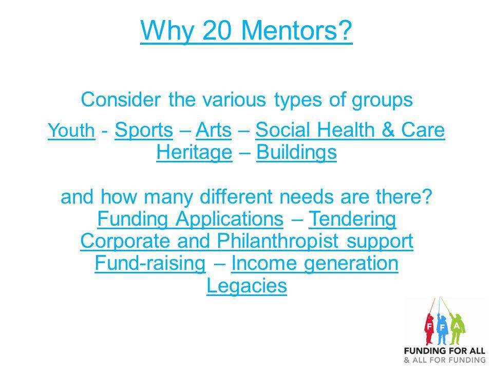 Why 20 Mentors.