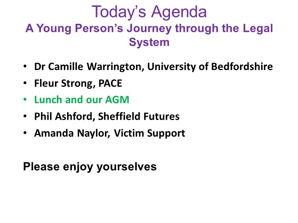 Today's Agenda A Young Person's Journey through the Legal System Dr Camille Warrington, University of Bedfordshire Fleur Strong, PACE Lunch and our AGM Phil Ashford, Sheffield Futures Amanda Naylor, Victim Support Please enjoy yourselves