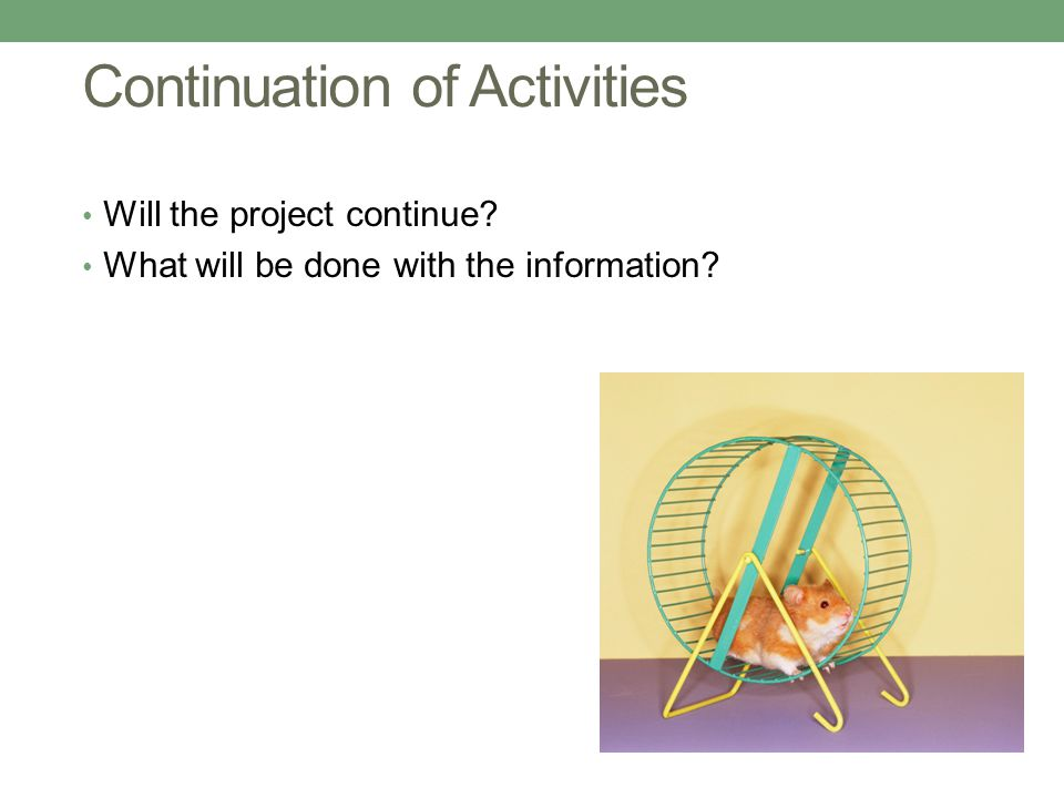 Continuation of Activities Will the project continue What will be done with the information