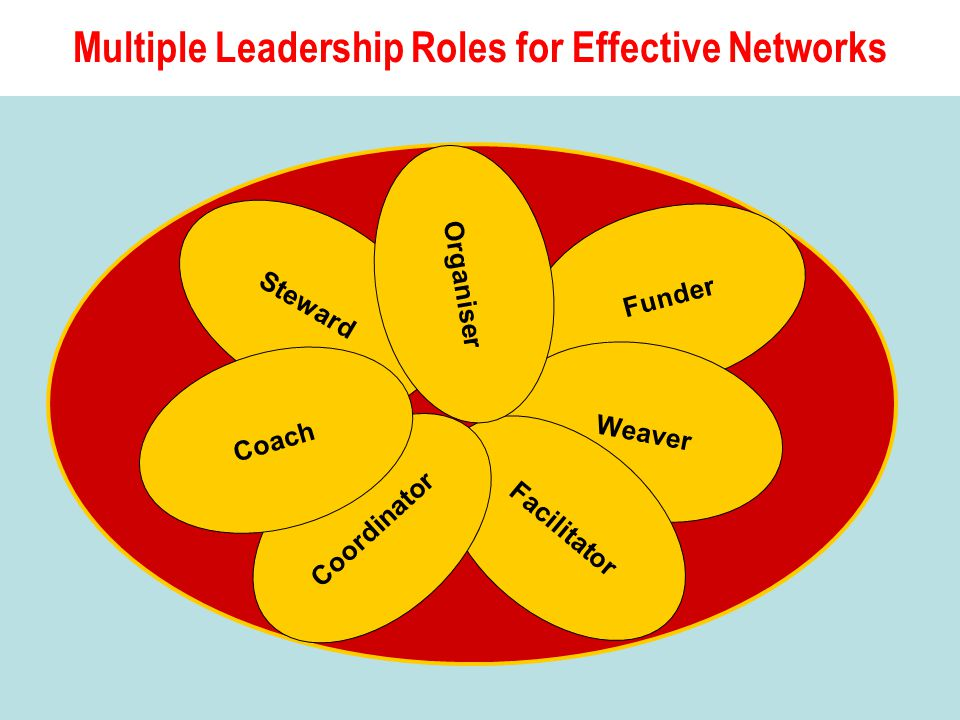 Funder Weaver Facilitator Coordinator Steward Organiser Multiple Leadership Roles for Effective Networks Coach