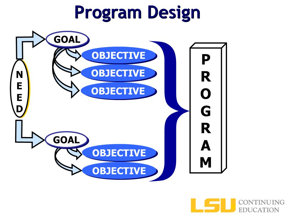 Program Design PROGRAMPROGRAM } GOAL OBJECTIVE NEEDNEED