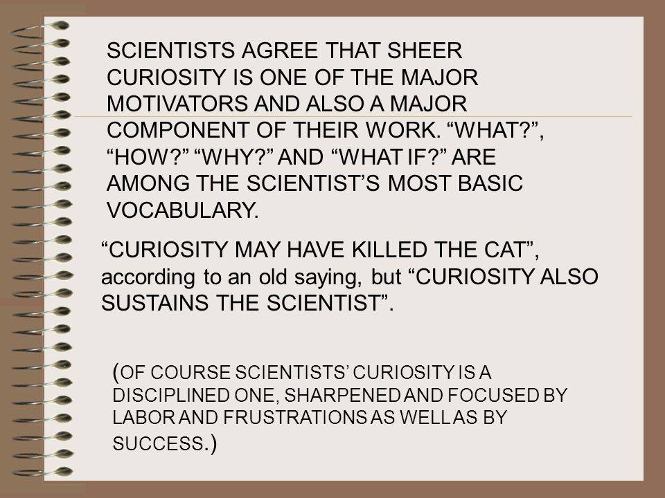 SCIENTISTS AGREE THAT SHEER CURIOSITY IS ONE OF THE MAJOR MOTIVATORS AND ALSO A MAJOR COMPONENT OF THEIR WORK.