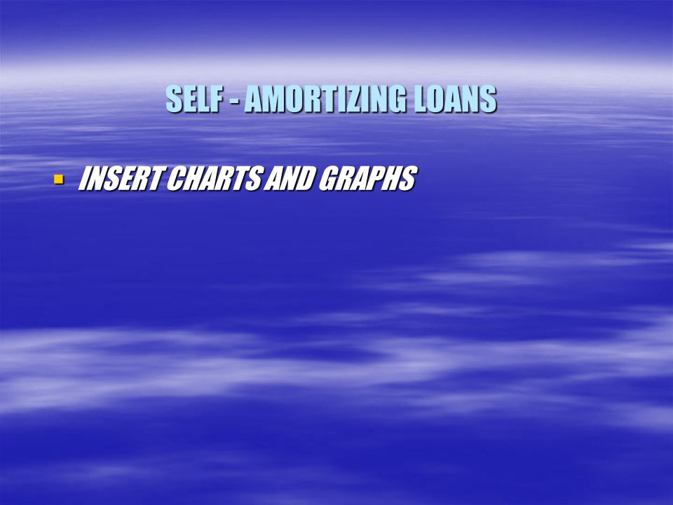 SELF - AMORTIZING LOANS  INSERT CHARTS AND GRAPHS