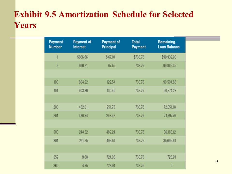 Exhibit 9.5 Amortization Schedule for Selected Years 16