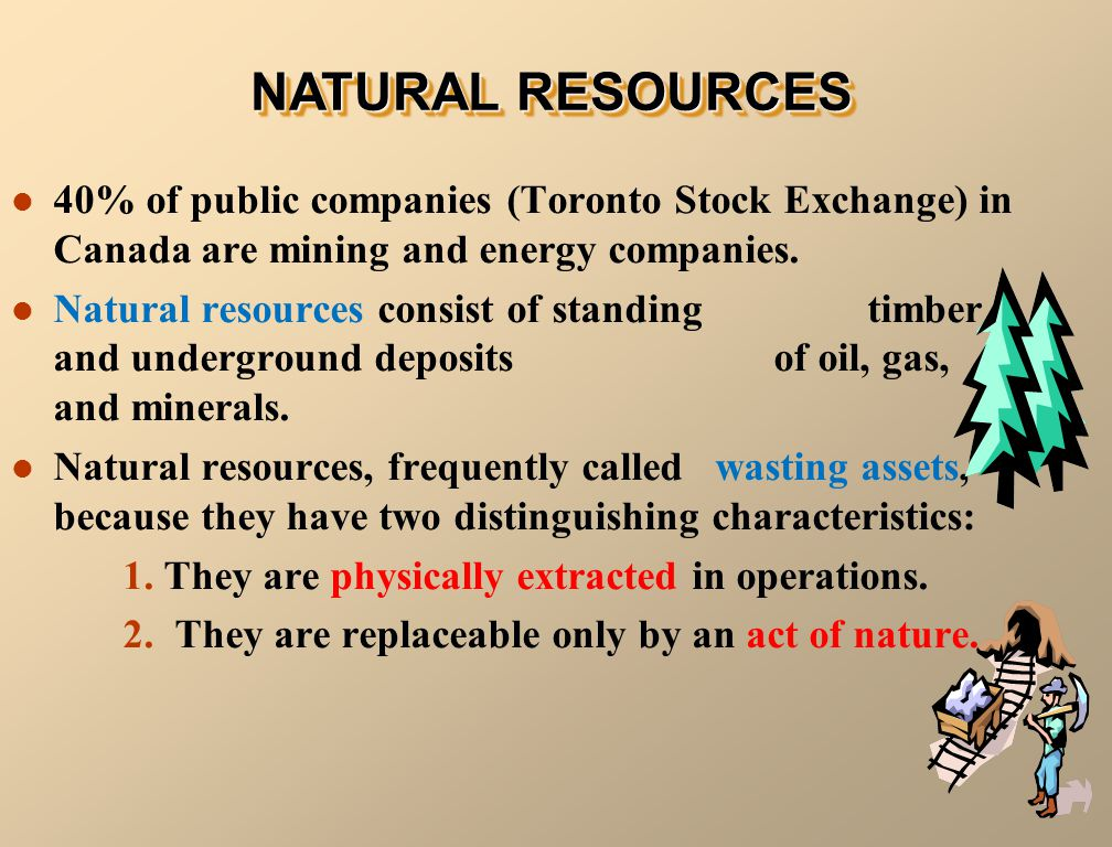 40% of public companies (Toronto Stock Exchange) in Canada are mining and energy companies.