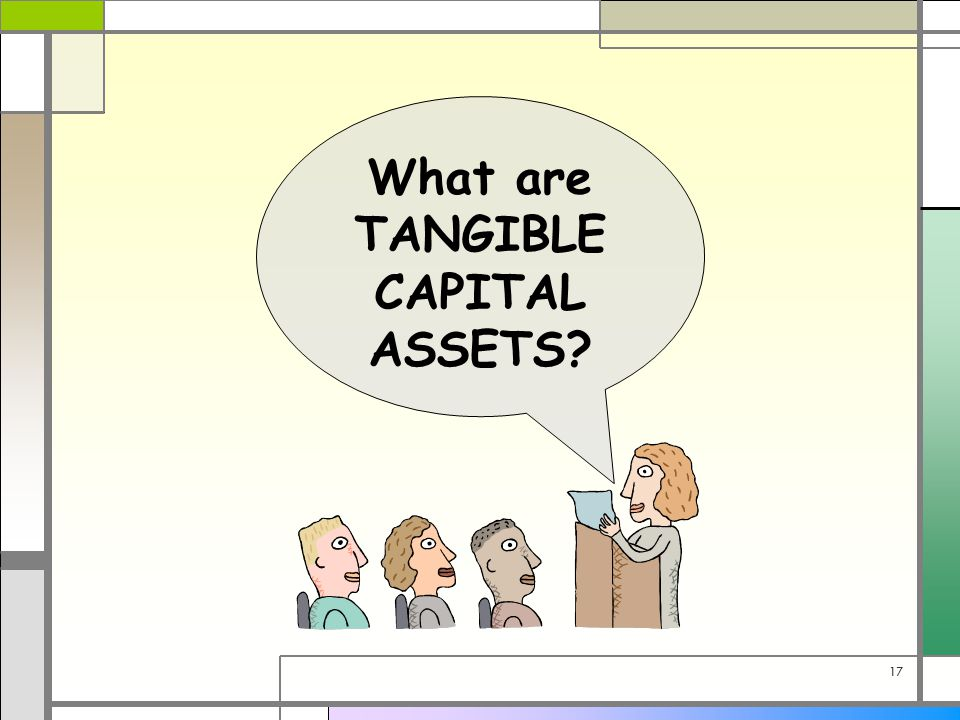 17 What are TANGIBLE CAPITAL ASSETS?