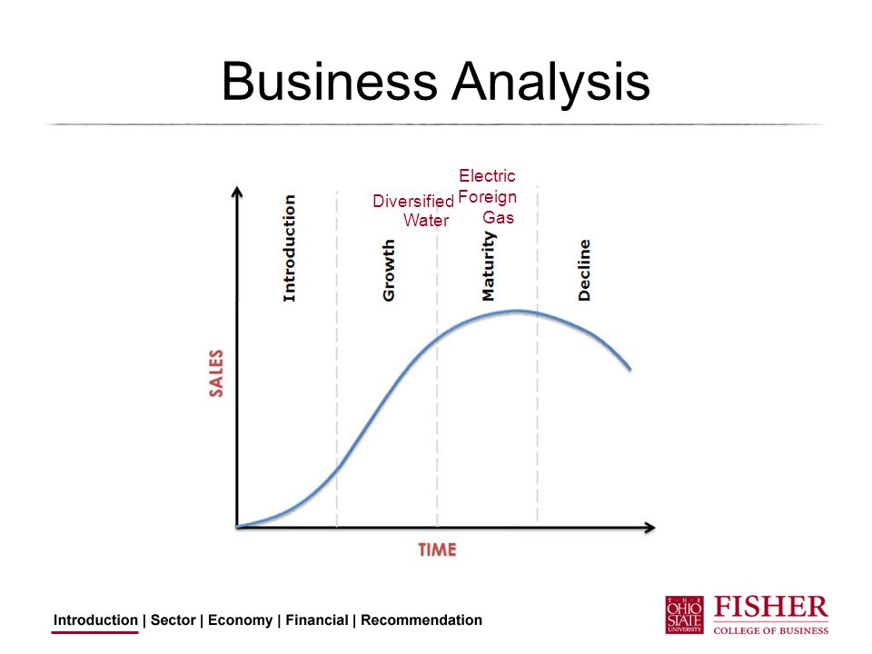 Business Analysis Electric Water Gas Foreign Diversified