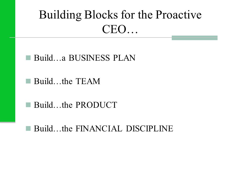 Building Blocks for the Proactive CEO… Build…a BUSINESS PLAN Build…the TEAM Build…the PRODUCT Build…the FINANCIAL DISCIPLINE