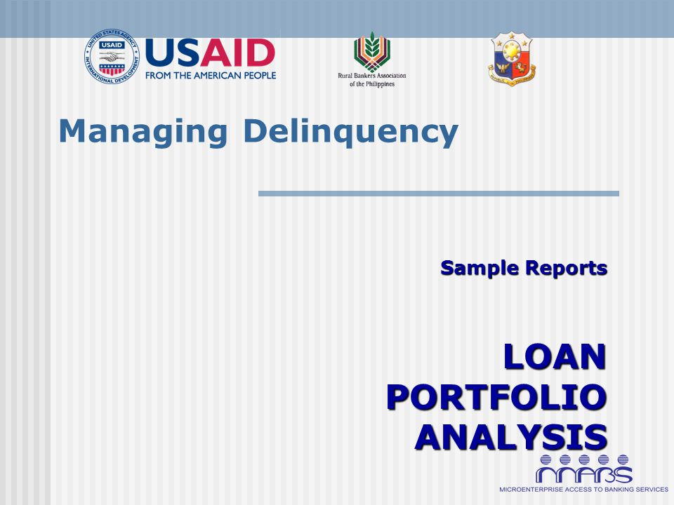 Managing Delinquency Sample Reports LOAN PORTFOLIO ANALYSIS