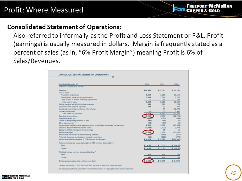 - Consolidated Statement of Operations: Also referred to informally as the Profit and Loss Statement or P&L.