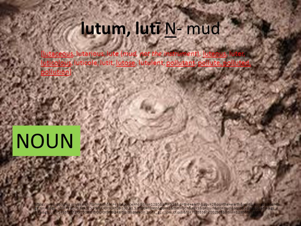 lutum, lutī N- mud https://www.google.com/search?tbm=isch&hl=en&source=hp&biw=1280&bih=918&q=the+earth&gbv=2&oq=the+earth&aq=f&aqi=g10&aql=& gs_sm=e&gs_upl=789l2758l0l3251l9l8l0l0l0l0l208l1302l1.5.2l8l0#hl=en&gbv=2&tbm=isch&sa=1&q=mud&oq=mud&aq=f&aqi=g10&aql=&gs_s m=e&gs_upl=1463l2072l0l2503l3l3l0l0l0l0l88l249l3l3l0&bav=on.2,or.r_gc.r_pw.,cf.osb&fp=7f20336bc0025c83&biw=1280&bih=918 [lutaceous, lutarious, lute (mud, not the instrument), luteous, luter, luticolous, luticole, lutit, lutose, lutulent, pollutant, pollute, polluted, pollution] NOUN