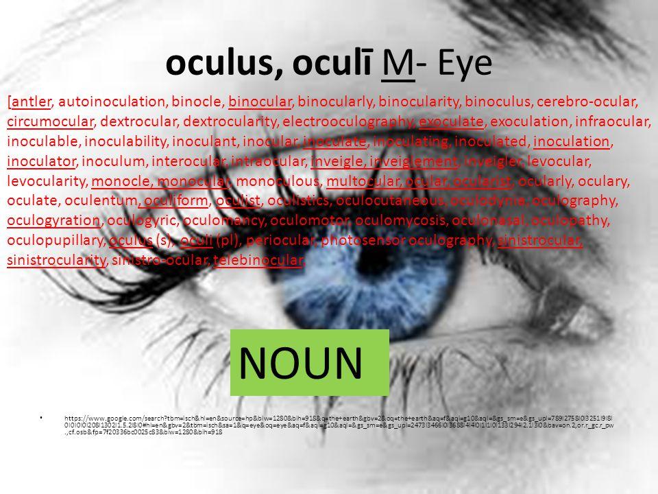 oculus, oculī M- Eye https://www.google.com/search tbm=isch&hl=en&source=hp&biw=1280&bih=918&q=the+earth&gbv=2&oq=the+earth&aq=f&aqi=g10&aql=&gs_sm=e&gs_upl=789l2758l0l3251l9l8l 0l0l0l0l208l1302l1.5.2l8l0#hl=en&gbv=2&tbm=isch&sa=1&q=eye&oq=eye&aq=f&aqi=g10&aql=&gs_sm=e&gs_upl=2473l3466l0l3688l4l4l0l1l1l0l133l294l2.1l3l0&bav=on.2,or.r_gc.r_pw.,cf.osb&fp=7f20336bc0025c83&biw=1280&bih=918 [antler, autoinoculation, binocle, binocular, binocularly, binocularity, binoculus, cerebro-ocular, circumocular, dextrocular, dextrocularity, electrooculography, exoculate, exoculation, infraocular, inoculable, inoculability, inoculant, inocular, inoculate, inoculating, inoculated, inoculation, inoculator, inoculum, interocular, intraocular, inveigle, inveiglement, inveigler, levocular, levocularity, monocle, monocular, monoculous, multocular, ocular, ocularist, ocularly, oculary, oculate, oculentum, oculiform, oculist, oculistics, oculocutaneous, oculodynia, oculography, oculogyration, oculogyric, oculomancy, oculomotor, oculomycosis, oculonasal, oculopathy, oculopupillary, oculus (s), oculi (pl), periocular, photosensor oculography, sinistrocular, sinistrocularity, sinistro-ocular, telebinocular, NOUN