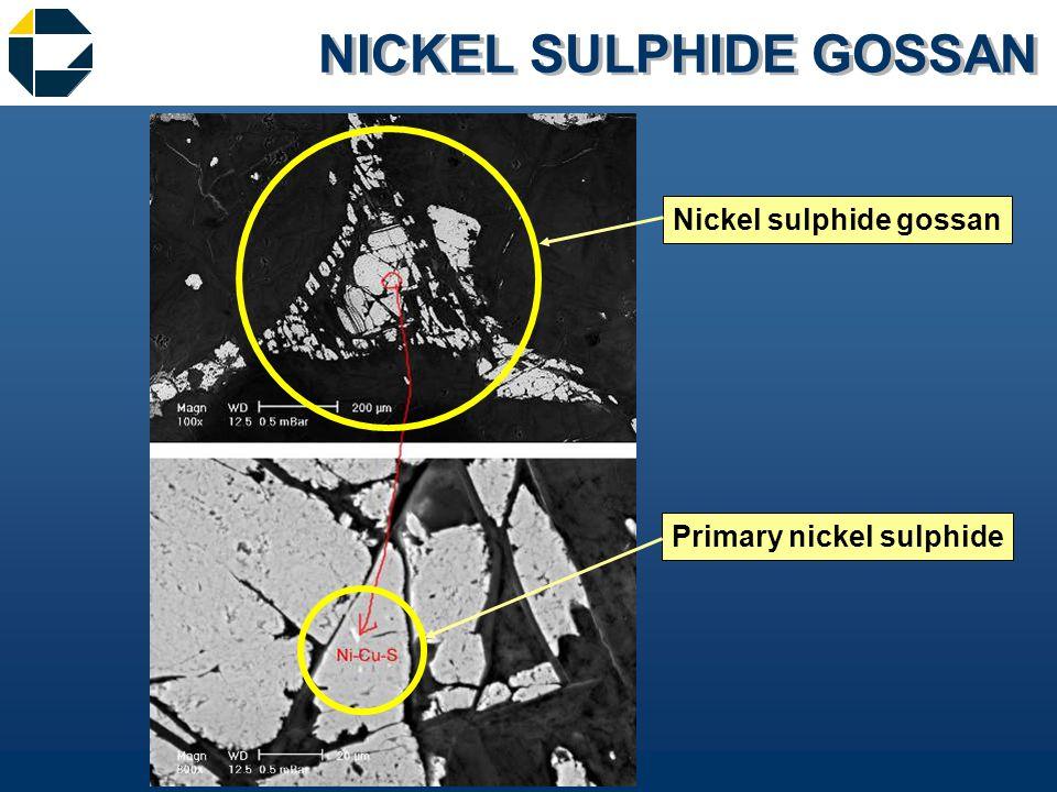 NICKEL SULPHIDE GOSSAN Nickel sulphide gossan Primary nickel sulphide