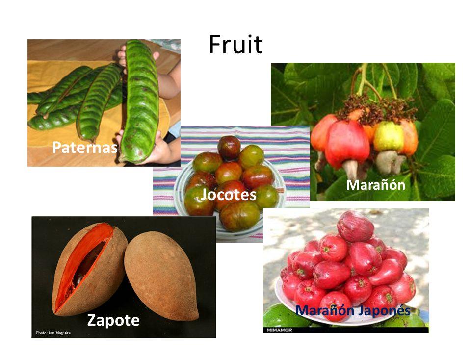 Fruit Jocotes Zapote Paternas Marañón Japonés Marañón