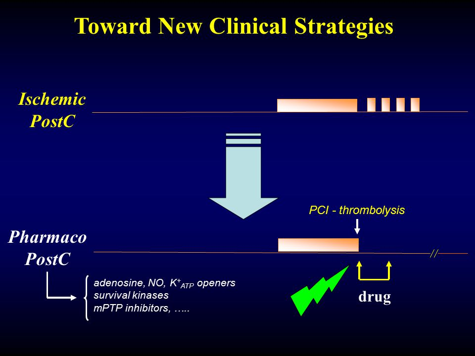Toward New Clinical Strategies Ischemic PostC Pharmaco PostC drug adenosine, NO, K + ATP openers survival kinases mPTP inhibitors, ….. PCI - thromboly