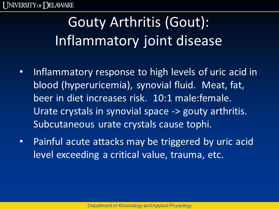 Department of Kinesiology and Applied Physiology Gouty Arthritis (Gout): Inflammatory joint disease Inflammatory response to high levels of uric acid
