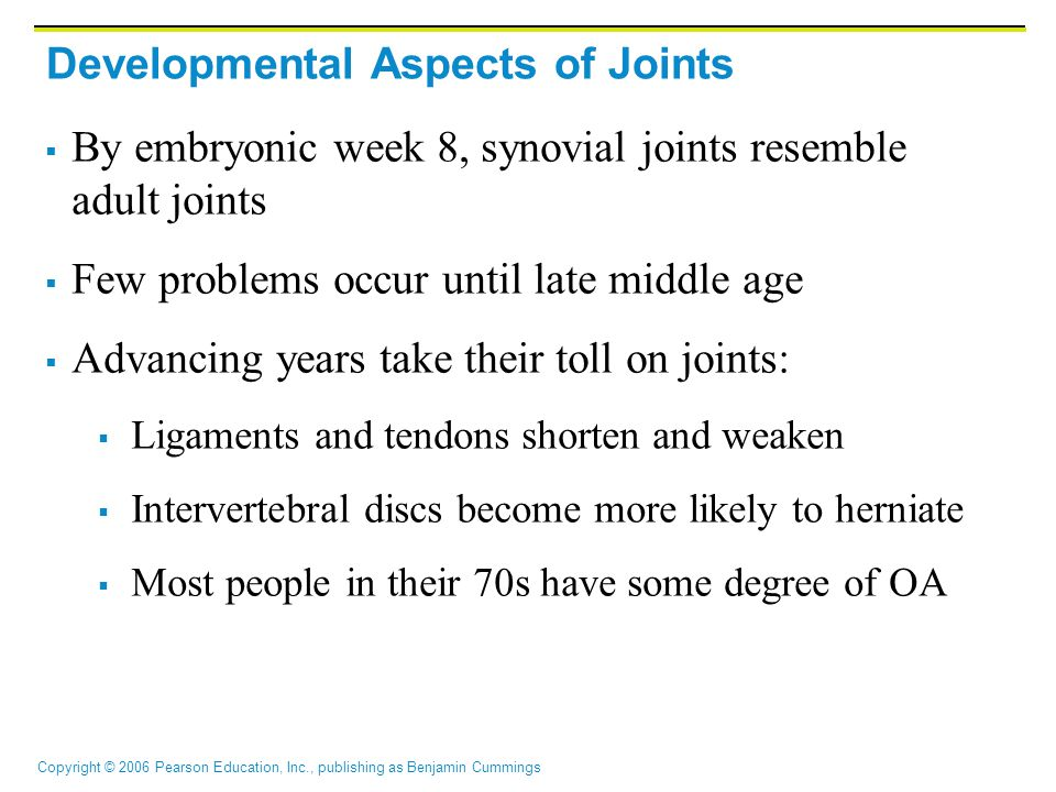 Copyright © 2006 Pearson Education, Inc., publishing as Benjamin Cummings Developmental Aspects of Joints  By embryonic week 8, synovial joints resem