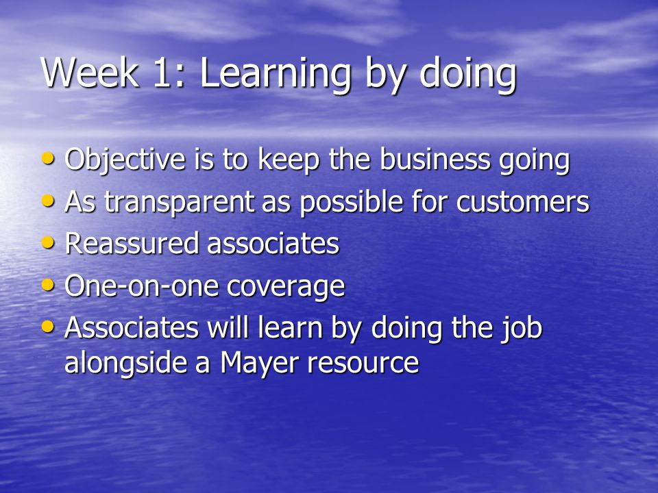 Week 1: Learning by doing Objective is to keep the business going Objective is to keep the business going As transparent as possible for customers As transparent as possible for customers Reassured associates Reassured associates One-on-one coverage One-on-one coverage Associates will learn by doing the job alongside a Mayer resource Associates will learn by doing the job alongside a Mayer resource