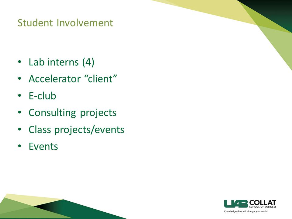 Student Involvement Lab interns (4) Accelerator client E-club Consulting projects Class projects/events Events