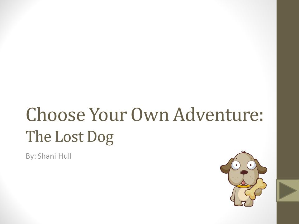 Choose Your Own Adventure: The Lost Dog By: Shani Hull