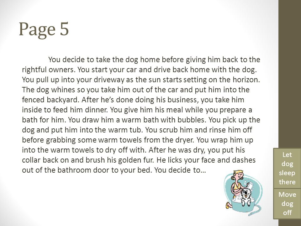 Page 5 You decide to take the dog home before giving him back to the rightful owners. You start your car and drive back home with the dog. You pull up