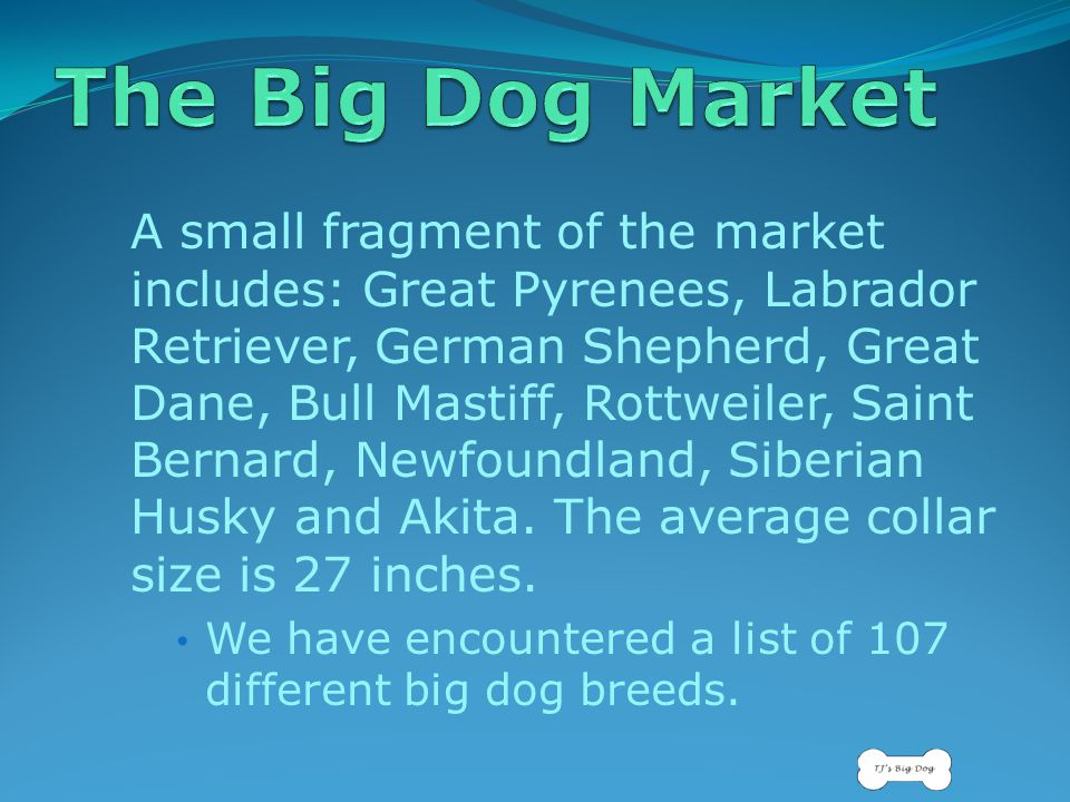 A small fragment of the market includes: Great Pyrenees, Labrador Retriever, German Shepherd, Great Dane, Bull Mastiff, Rottweiler, Saint Bernard, Newfoundland, Siberian Husky and Akita.