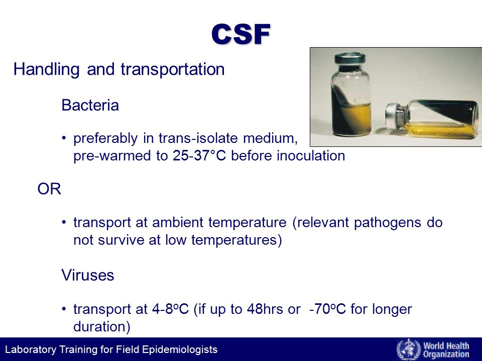 Laboratory Training for Field Epidemiologists CSF Handling and transportation Bacteria preferably in trans-isolate medium, pre-warmed to 25-37°C before inoculation OR transport at ambient temperature (relevant pathogens do not survive at low temperatures) Viruses transport at 4-8 o C (if up to 48hrs or -70 o C for longer duration)