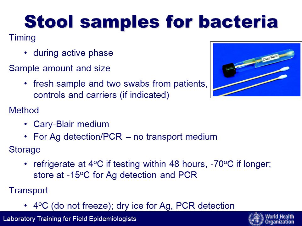 Laboratory Training for Field Epidemiologists Stool samples for bacteria Timing during active phase Sample amount and size fresh sample and two swabs from patients, controls and carriers (if indicated) Method Cary-Blair medium For Ag detection/PCR – no transport medium Storage refrigerate at 4 o C if testing within 48 hours, -70 o C if longer; store at -15 o C for Ag detection and PCR Transport 4 o C (do not freeze); dry ice for Ag, PCR detection