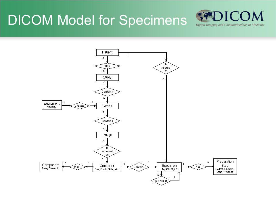 DICOM Model for Specimens