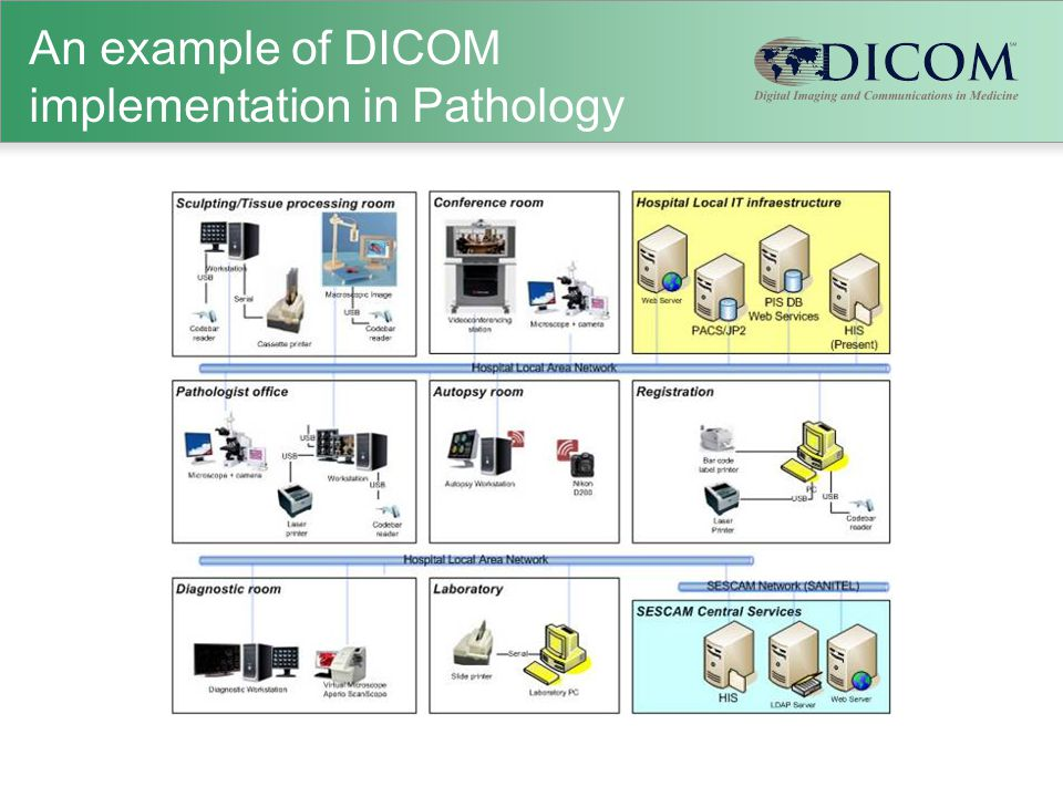 An example of DICOM implementation in Pathology