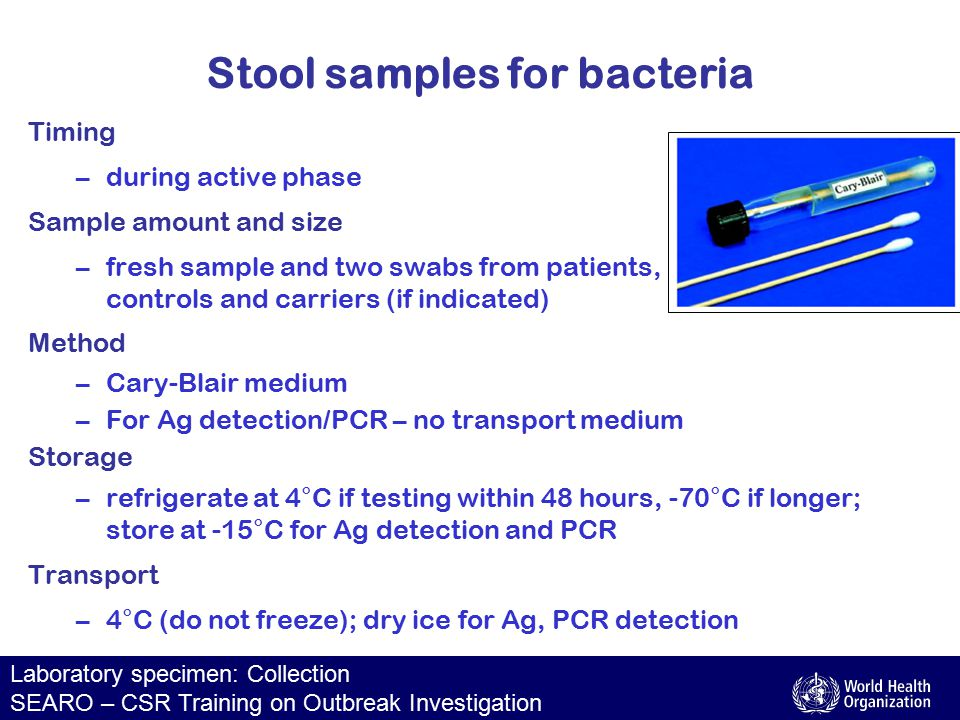 Laboratory specimen: Collection SEARO – CSR Training on Outbreak Investigation Stool samples for bacteria Timing –during active phase Sample amount and size –fresh sample and two swabs from patients, controls and carriers (if indicated) Method –Cary-Blair medium –For Ag detection/PCR – no transport medium Storage –refrigerate at 4°C if testing within 48 hours, -70°C if longer; store at -15°C for Ag detection and PCR Transport –4°C (do not freeze); dry ice for Ag, PCR detection
