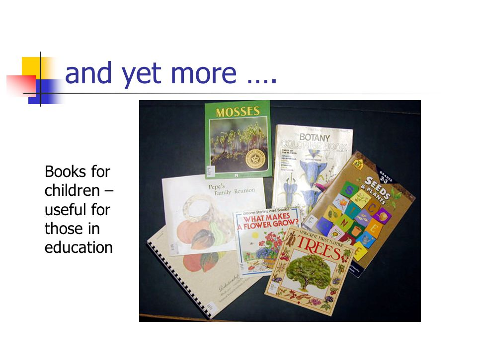 and yet more …. Books for children – useful for those in education