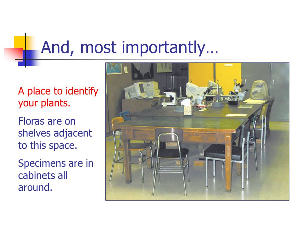 And, most importantly… A place to identify your plants.