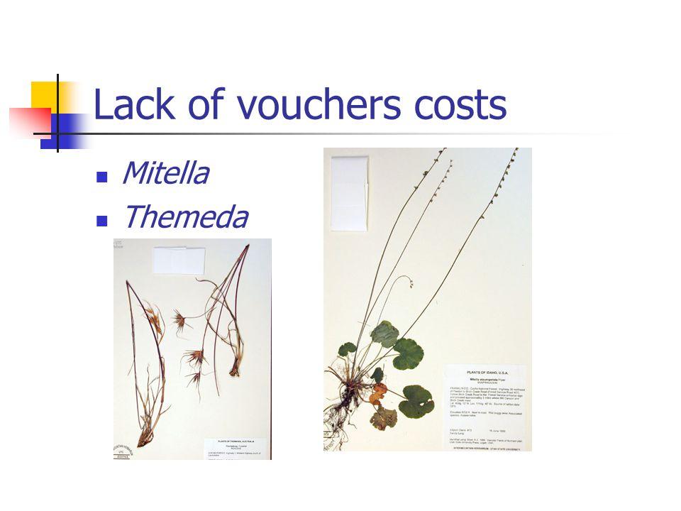 Lack of vouchers costs Mitella Themeda
