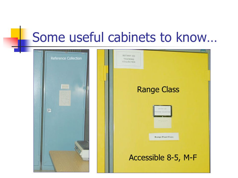 Some useful cabinets to know… Range Class Accessible 8-5, M-F