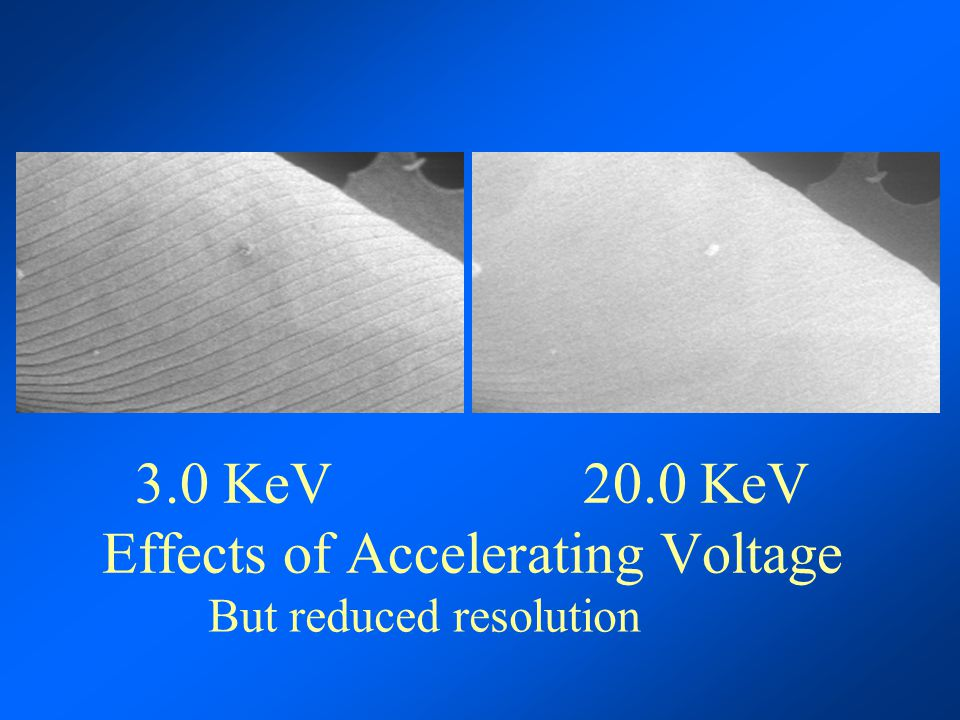 3.0 KeV 20.0 KeV Effects of Accelerating Voltage But reduced resolution