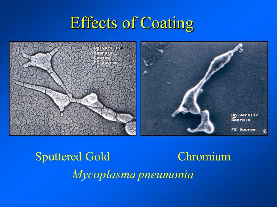 Effects of Coating Sputtered Gold Chromium Mycoplasma pneumonia