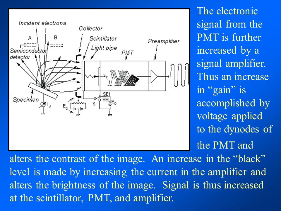 """The electronic signal from the PMT is further increased by a signal amplifier. Thus an increase in """"gain"""" is accomplished by voltage applied to the dy"""