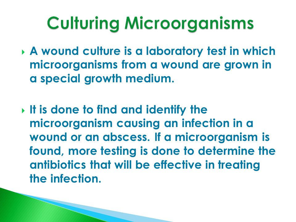  A wound culture is a laboratory test in which microorganisms from a wound are grown in a special growth medium.