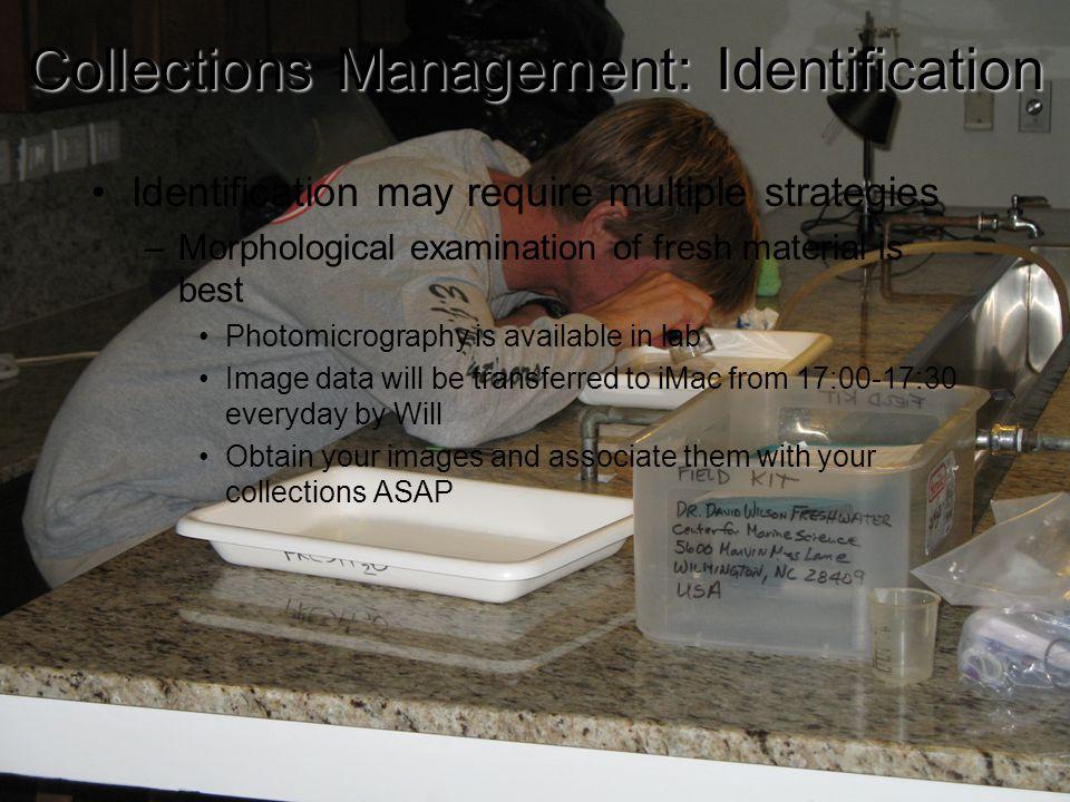 16Delegations Field Cameras Lab Cameras Water tables