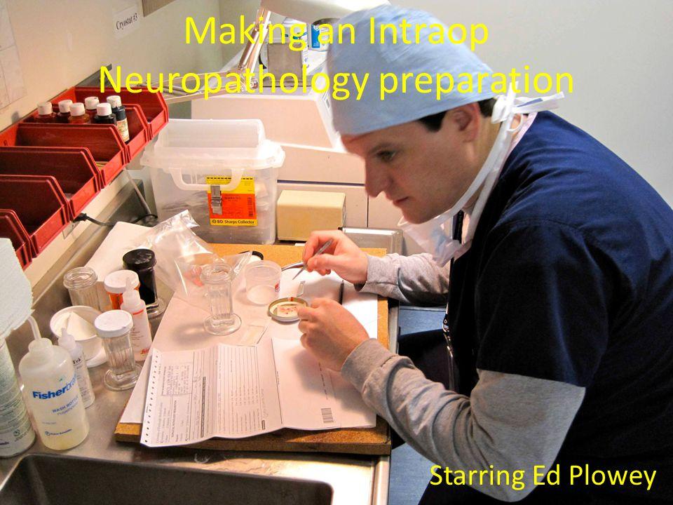 Making an Intraop Neuropathology preparation Starring Ed Plowey
