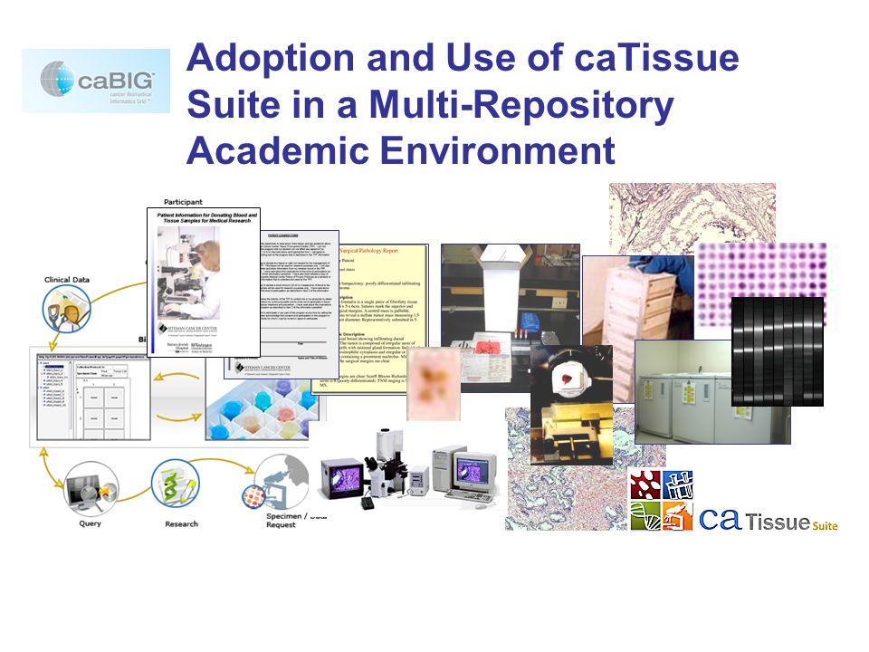 caTissue Suite Support  Illustrated manuals for technical and biobanking staff  Web-based, interactive training tools  Web- and human-based Knowledge Center resources