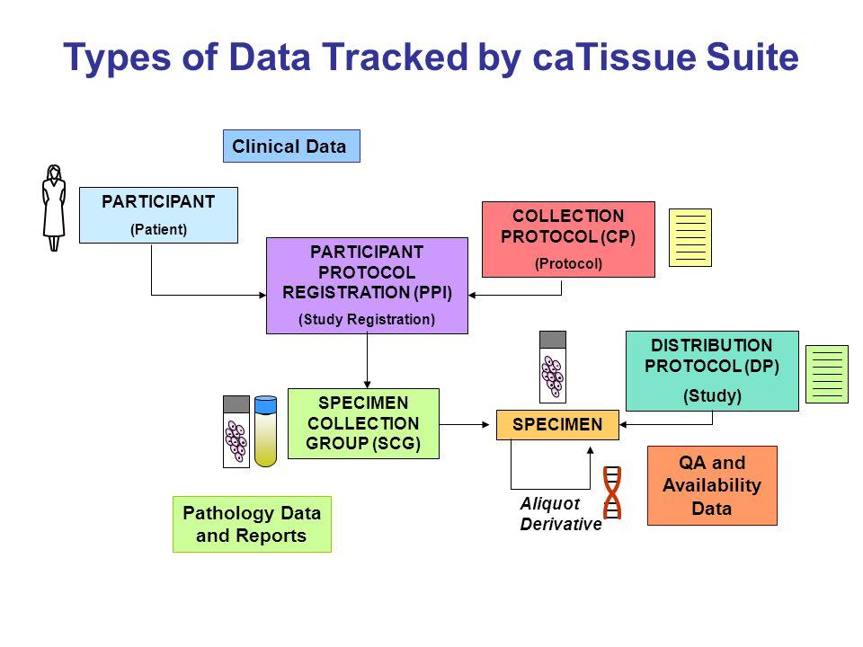 caTissue Suite Pathology Annotation CAP Cancer Checklist caTissue Suite Pathology Annotation Form Dynamic Extensions (DE) Tool