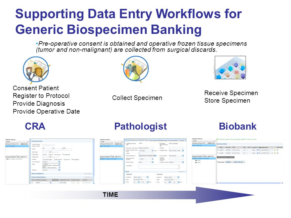 Support for 'High-Throughput' Banking of Cells and Biofluids Collect Whole Blood Plasma WBC Aliquot STORE A tube of whole blood is collected which is then processed and aliquoted into individual components, as per a unique SOP for that protocol.