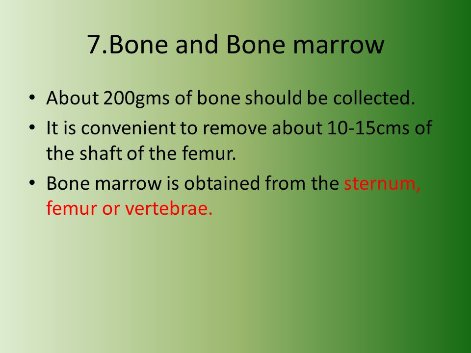 7.Bone and Bone marrow About 200gms of bone should be collected.