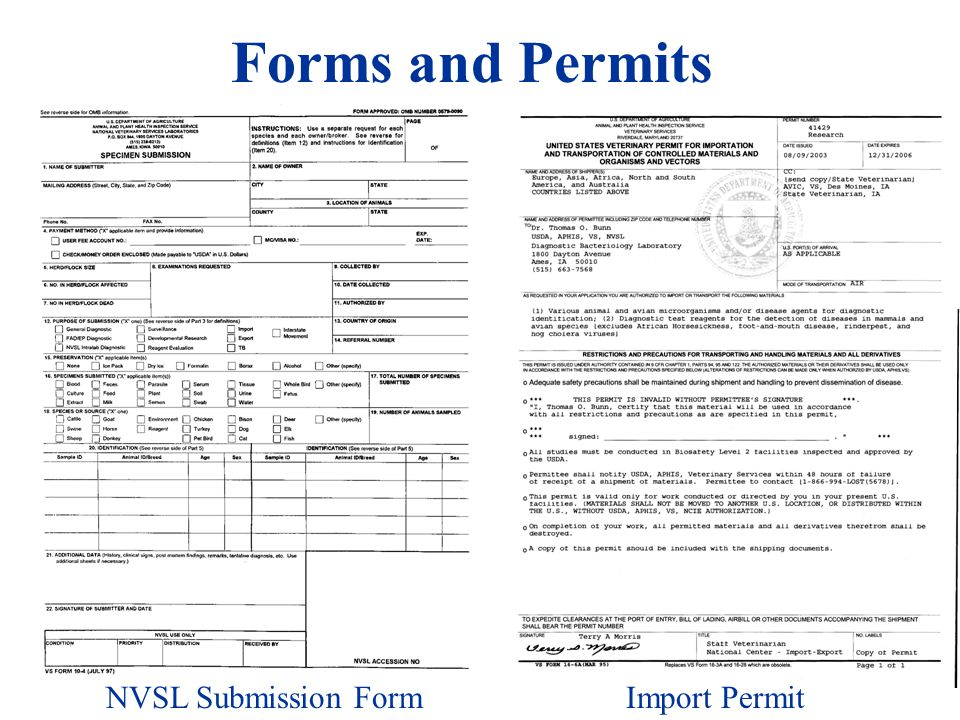 Forms and Permits Submission form (VS 10-4) Organisms and vectors permit (16-6A ) NVSL Submission FormImport Permit