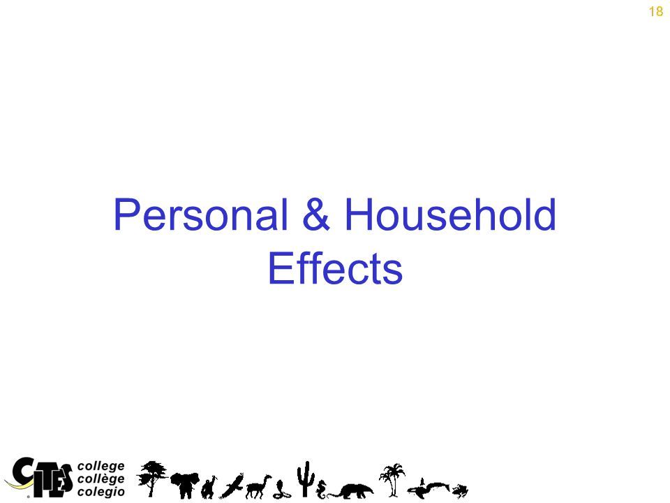 18 Personal & Household Effects 18