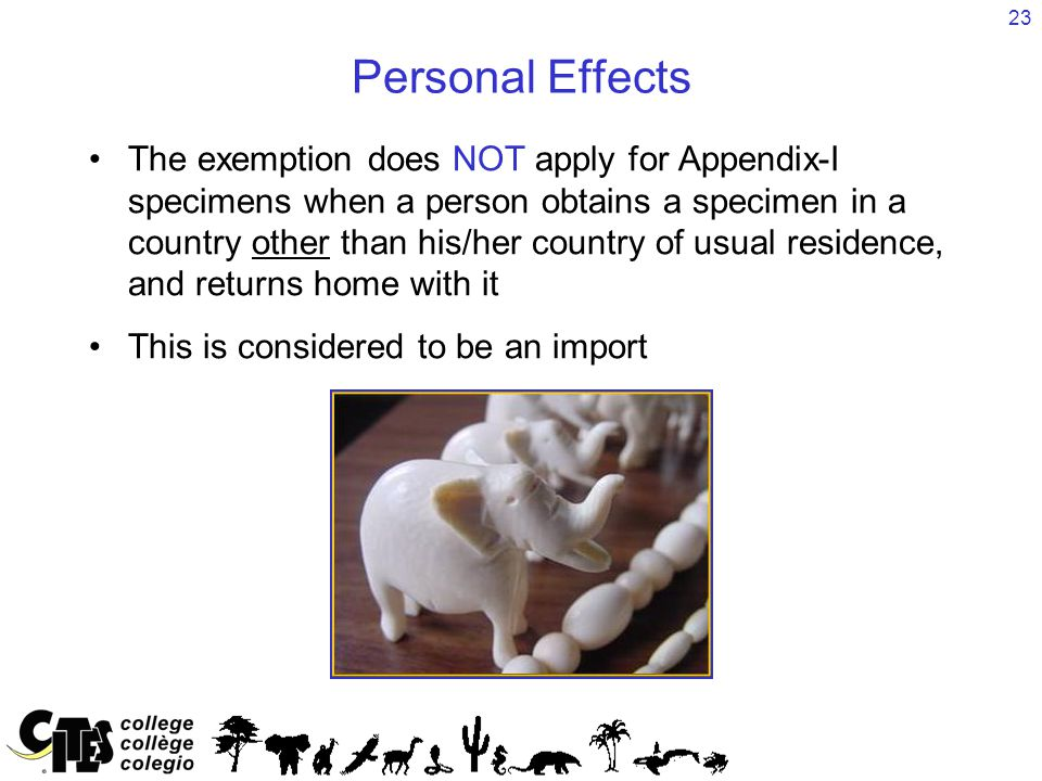 23 Personal Effects The exemption does NOT apply for Appendix-I specimens when a person obtains a specimen in a country other than his/her country of usual residence, and returns home with it This is considered to be an import