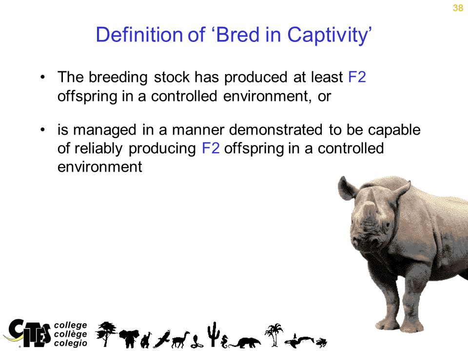 38 Definition of 'Bred in Captivity' The breeding stock has produced at least F2 offspring in a controlled environment, or is managed in a manner demonstrated to be capable of reliably producing F2 offspring in a controlled environment 38