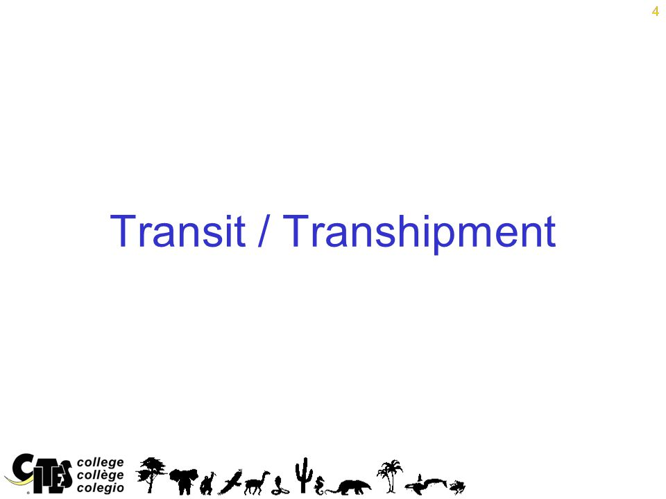 4 Transit / Transhipment 4